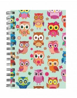 Happy Owls -14*20